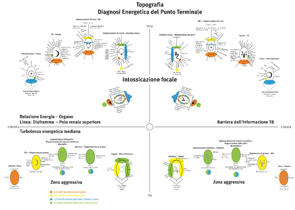 Topografia: Diagnosi Energetica del Punto Terminale